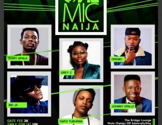 One Mic Naija Concert